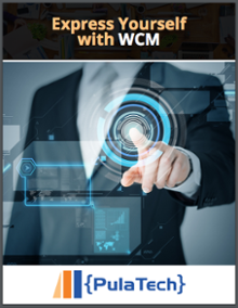 wcm-ebook-imag1